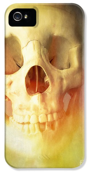 Creepy iPhone 5 Cases - Hell Fire iPhone 5 Case by Edward Fielding