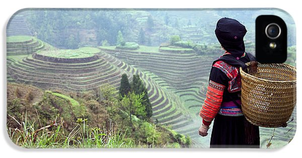 Farmland iPhone 5 Cases - Her Rice terraces iPhone 5 Case by King Wu
