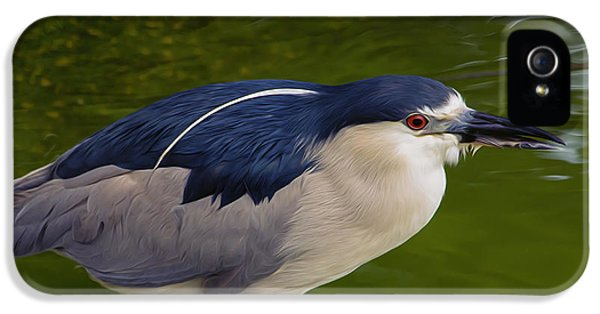 Gil iPhone 5 Cases - Heron on Green iPhone 5 Case by Bill Tiepelman