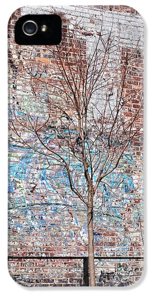 Graffiti iPhone 5 Cases - High Line Palimpsest iPhone 5 Case by Rona Black