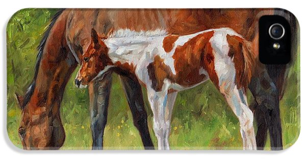 Hose iPhone 5 Cases - Horse and Foal iPhone 5 Case by David Stribbling