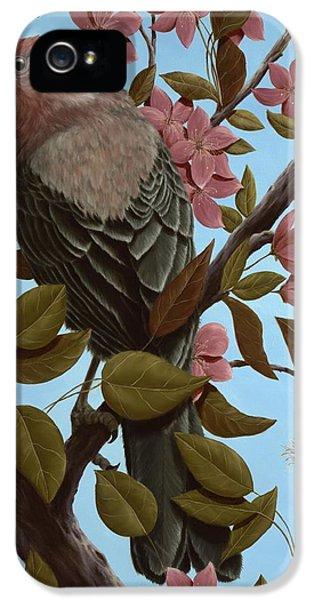 House Finch IPhone 5 / 5s Case by Rick Bainbridge
