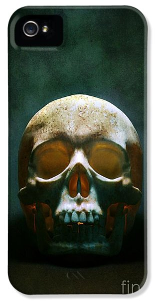 Reaper iPhone 5 Cases - Human Skull iPhone 5 Case by Carlos Caetano