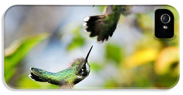 Hummingbirds Ensuing Battle IPhone 5 / 5s Case by Christina Rollo