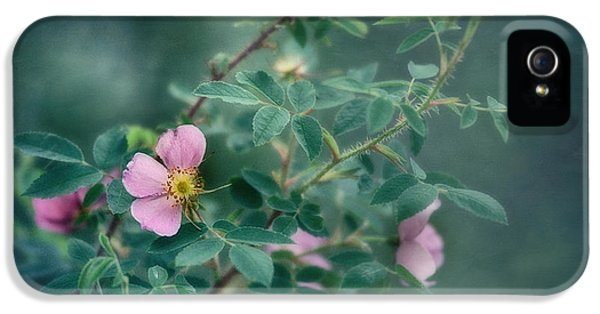 Prickly Wild Rose iPhone 5 Cases - Imperfect Beauty iPhone 5 Case by Priska Wettstein