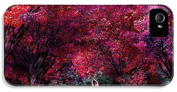 Forrest iPhone 5 Cases - In Her Dreamworld iPhone 5 Case by Photodream Art