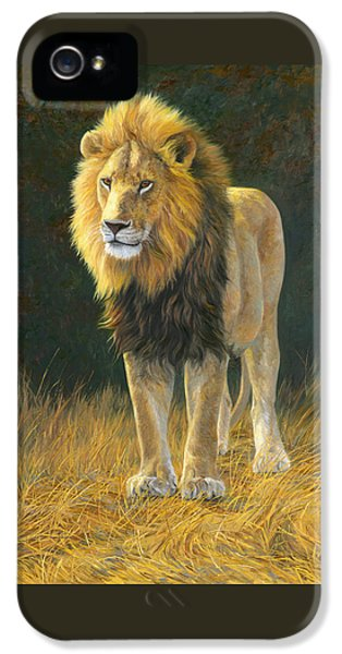 Lion iPhone 5 Cases - In His Prime iPhone 5 Case by Lucie Bilodeau