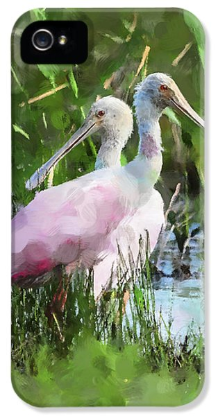 In The Bayou #2 IPhone 5 / 5s Case by Betty LaRue