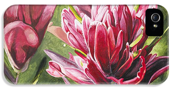Indian Paintbrush IPhone 5 / 5s Case by Aaron Spong