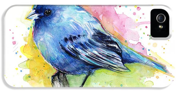 Blue Bird iPhone 5 Cases - Indigo Bunting Blue Bird Watercolor iPhone 5 Case by Olga Shvartsur
