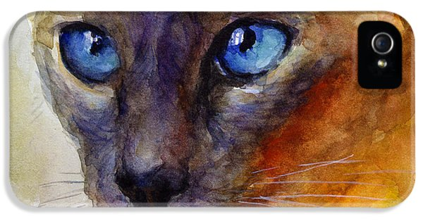 Order iPhone 5 Cases - Intense Siamese Cat painting print 2 iPhone 5 Case by Svetlana Novikova