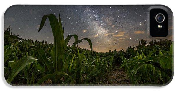 Moonrise iPhone 5 Cases - Iowa Corn iPhone 5 Case by Aaron J Groen