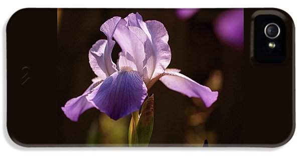Iris Aglow IPhone 5 / 5s Case by Rona Black