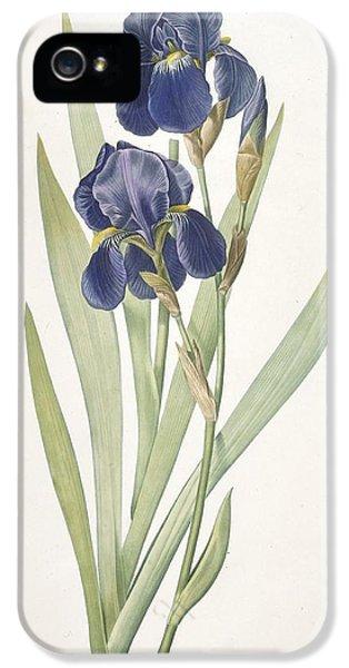 Iris Germanica Bearded Iris IPhone 5 / 5s Case by Pierre Joseph Redoute