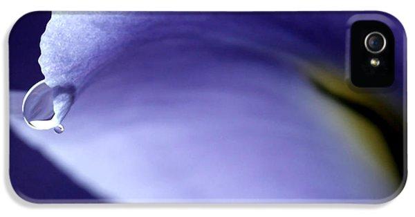 Iris Rain IPhone 5 / 5s Case by Krissy Katsimbras