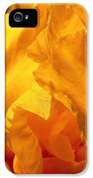 Iris Undulation IPhone 5 / 5s Case by Rona Black