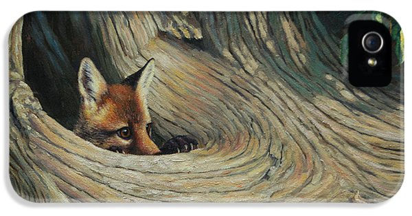 Red Fox iPhone 5 Cases - Fox - Its a Big World Out There iPhone 5 Case by Crista Forest