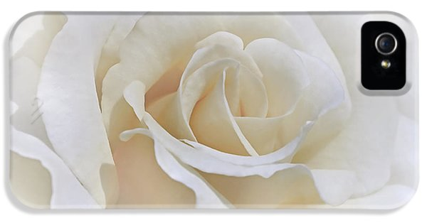 Ivory Rose iPhone 5 Cases - Ivory Rose in the Clouds iPhone 5 Case by Jennie Marie Schell