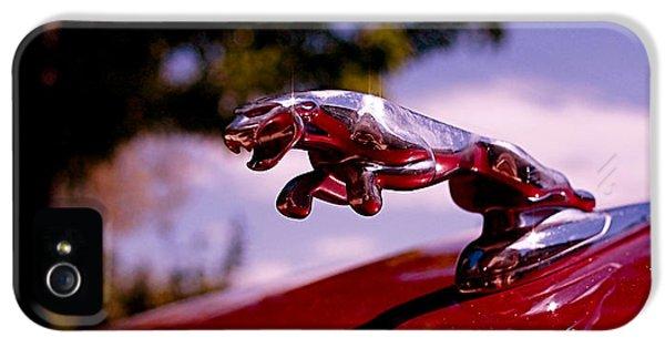 Automobile iPhone 5 Cases - Jaguar iPhone 5 Case by Rona Black