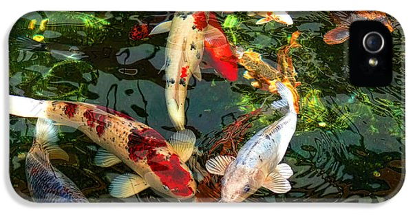 Fish iPhone 5 Cases - Japanese Koi Fish Pond iPhone 5 Case by Jennie Marie Schell