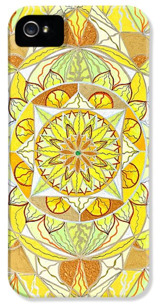 Image iPhone 5 Cases - Joy iPhone 5 Case by Teal Eye  Print Store