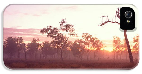 Sillouette iPhone 5 Cases - Kakadu National Park Northern Territory iPhone 5 Case by Panoramic Images