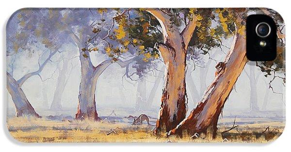 Kangaroo Grazing IPhone 5 / 5s Case by Graham Gercken