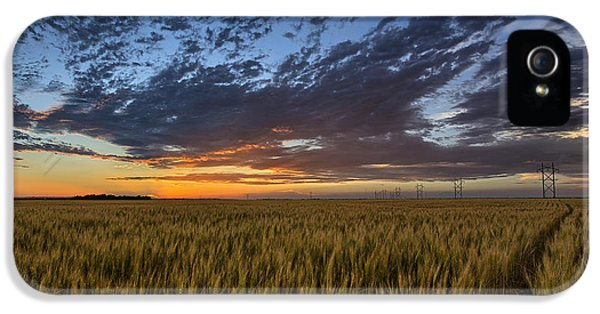 Field iPhone 5 Cases - Kansas Color iPhone 5 Case by Thomas Zimmerman