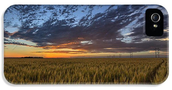 Kansas Color IPhone 5 / 5s Case by Thomas Zimmerman