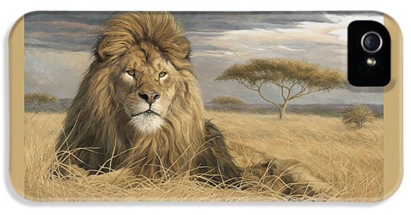 Male iPhone 5 Cases - King Of The Pride iPhone 5 Case by Lucie Bilodeau