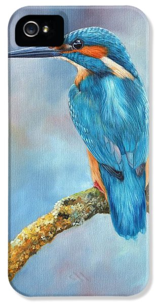 Beak iPhone 5 Cases - Kingfisher iPhone 5 Case by David Stribbling