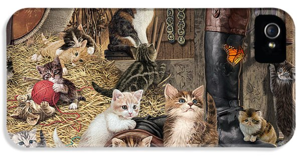 Shed iPhone 5 Cases - Kitten Capers iPhone 5 Case by Steve Read