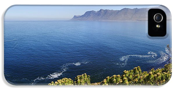 Daytime iPhone 5 Cases - Kogelberg area view over ocean iPhone 5 Case by Johan Swanepoel