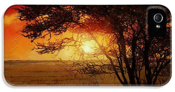 La Savana Al Tramonto IPhone 5 / 5s Case by Guido Borelli
