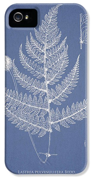 Fern iPhone 5 Cases - Lastrea pulvinulifera iPhone 5 Case by Aged Pixel
