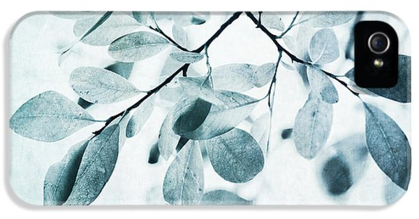 Leaf iPhone 5 Cases - Leaves In Dusty Blue iPhone 5 Case by Priska Wettstein