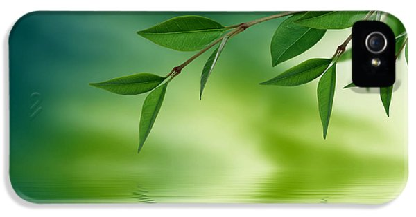 Ecology iPhone 5 Cases - Leaves reflecting in water iPhone 5 Case by Aged Pixel