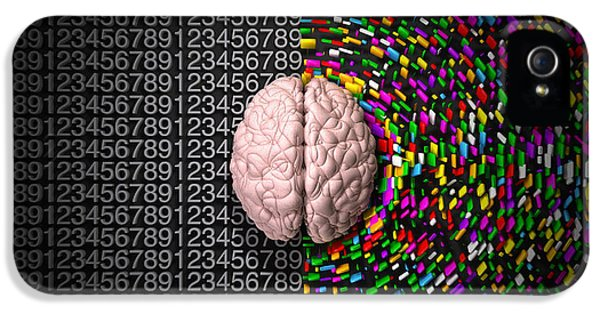 Control iPhone 5 Cases - Left Brain Right Brain iPhone 5 Case by Allan Swart