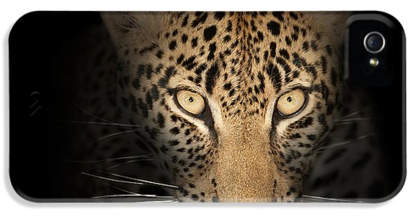 Close Up iPhone 5 Cases - Leopard In The Dark iPhone 5 Case by Johan Swanepoel