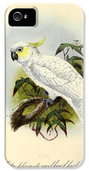 Lesser Cockatoo IPhone 5 / 5s Case by J G Keulemans