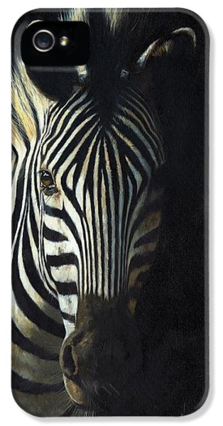 Mane iPhone 5 Cases - Light and Shade iPhone 5 Case by David Stribbling