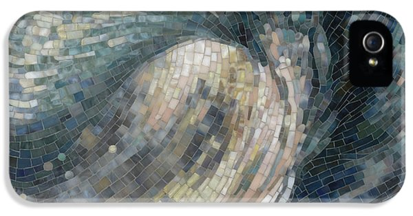 Mosaic iPhone 5 Cases - Light Wave  iPhone 5 Case by Mia Tavonatti