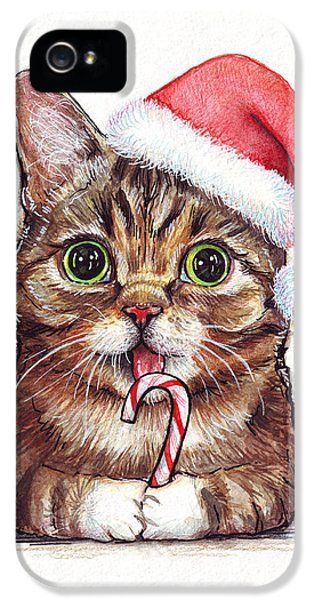 Cane iPhone 5 Cases - Lil Bub Cat in Santa Hat iPhone 5 Case by Olga Shvartsur
