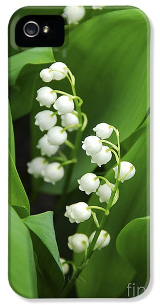 Leaf iPhone 5 Cases - Lily-of-the-valley  iPhone 5 Case by Elena Elisseeva
