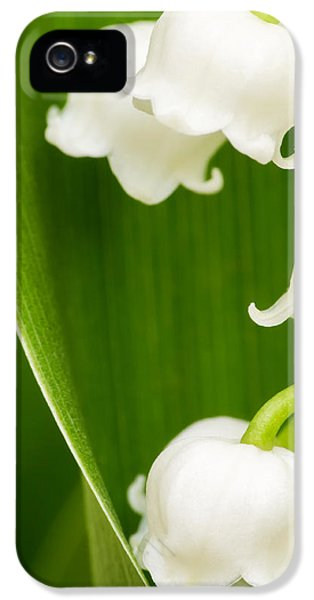 Poisonous iPhone 5 Cases - Lily of the Valley iPhone 5 Case by Wim Lanclus