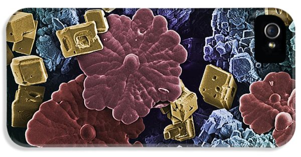 Scanning Electron Microscope iPhone 5 Cases - Limescale, Sem iPhone 5 Case by Science Photo Library