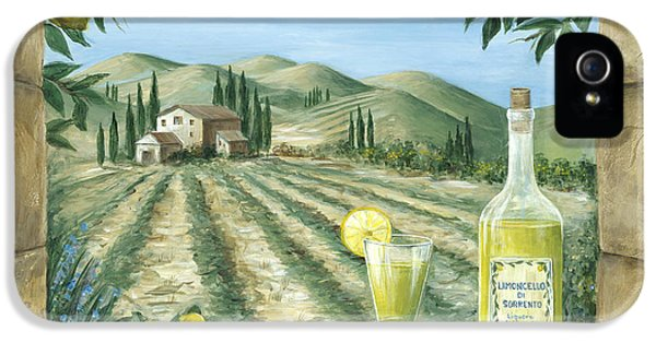Glass iPhone 5 Cases - Limoncello iPhone 5 Case by Marilyn Dunlap