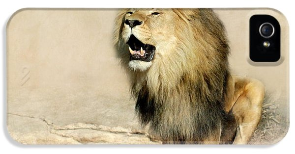 Lion iPhone 5 Cases - Lion iPhone 5 Case by Heike Hultsch