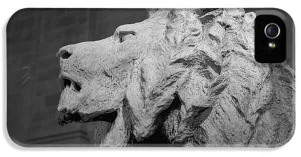 Bronze iPhone 5 Cases - Lion of the Art Institute Chicago B W iPhone 5 Case by Steve Gadomski