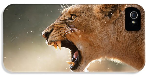 Female iPhone 5 Cases - Lioness displaying dangerous teeth in a rainstorm iPhone 5 Case by Johan Swanepoel